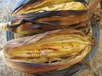 Grill corn for 8-10 minutes in the husks to keep them moist. Photo by Christine Willmsen