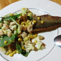 Rainbow trout in anchovy sauce with cauliflower and corn, photo by Christine Willmsen